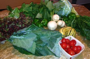 Clockwise from left: red leaf lettuce, arugula, green peppers, turnips with greens, cabbage, chard, delicata squash, cherry tomatoes, and collard greens.