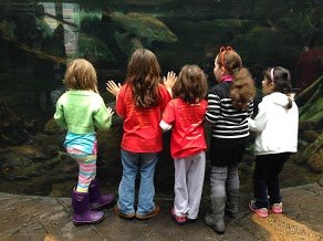 These schoolgirls get up close and personal with another school . . . of fish!