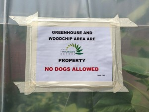 For obvious reasons, please keep the four-legged friends out of the greenhouse :)!
