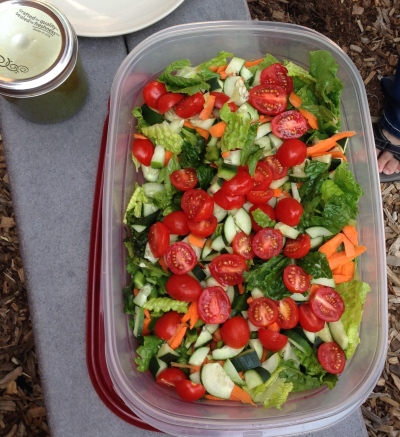 This delicious, healthy salad awaits its homemade dressing!