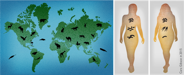Left: Diversity of animals living in different habitats of the Earth. Right: Different bacteria found on individual people.