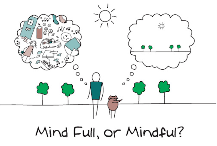 tncs-mindfulness-in-the-classroom