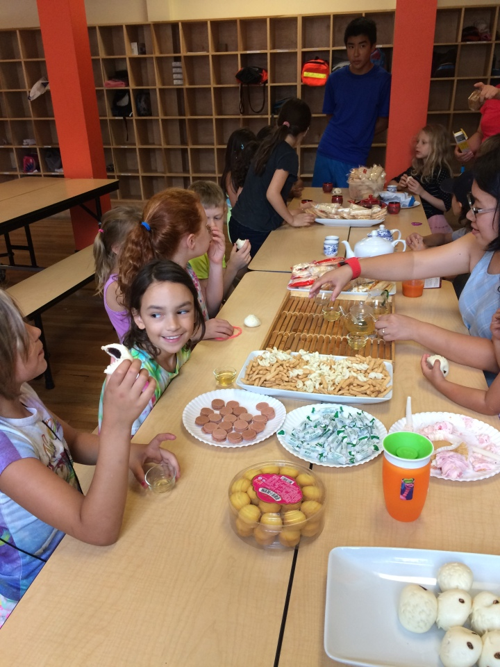 tncs-chinese-immersion-summer-camp-2017
