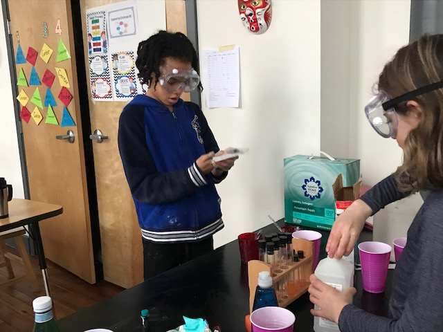 tncs-students-work-on-science-fair-projects